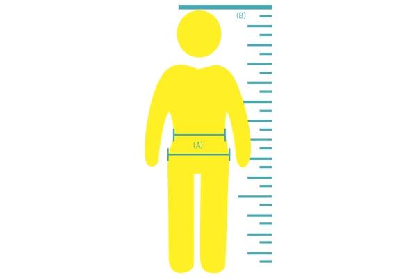 Waist-to-hip and waist-to-height ratio