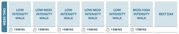 Week 2 Walking plan
