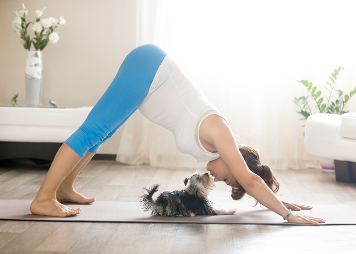 Woman in downward dog yoga pose, touching noses with a puppy