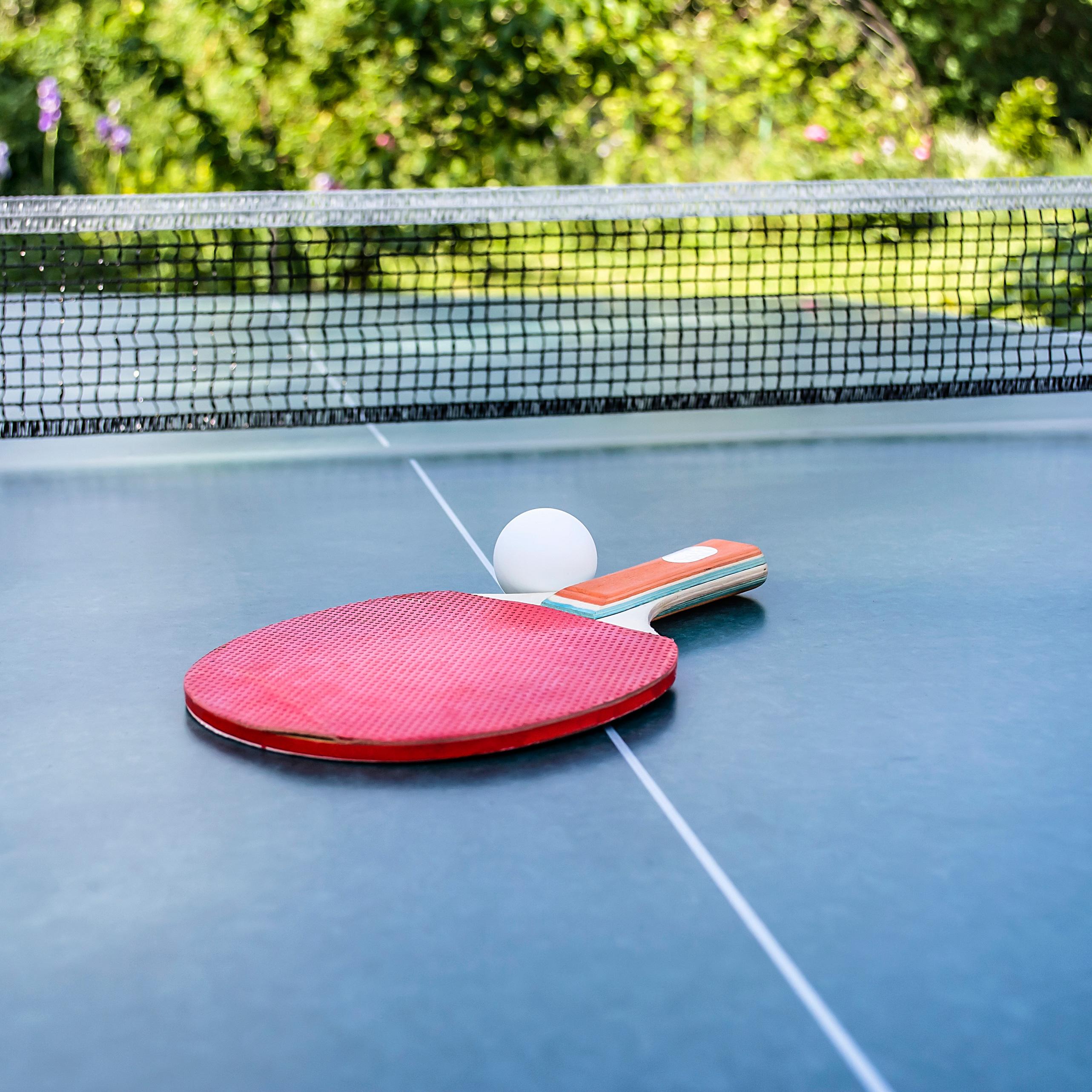 Abnehmen im Frühling - Tischtennis