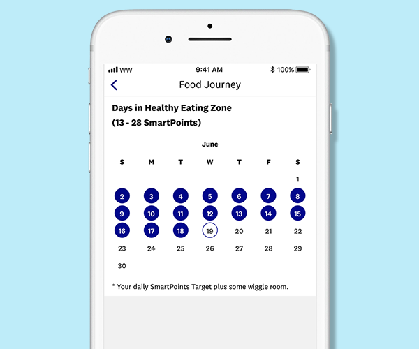Weight Watchers Healthy Eating Zone App Screen