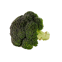 how to keep broccoli fresh