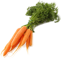 how to keep carrots fresh
