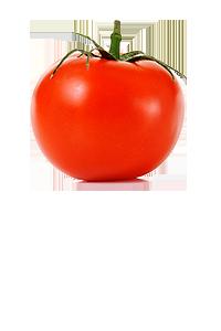 how to keep tomatoes fresh