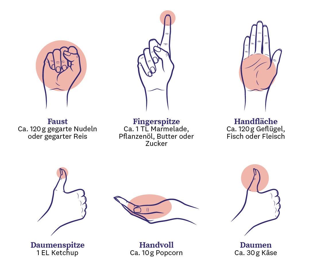 Sechs Hände, die zeigen, wie man mit verschiedenen Bereichen der Hand Portionsgrößen bestimmen kann.