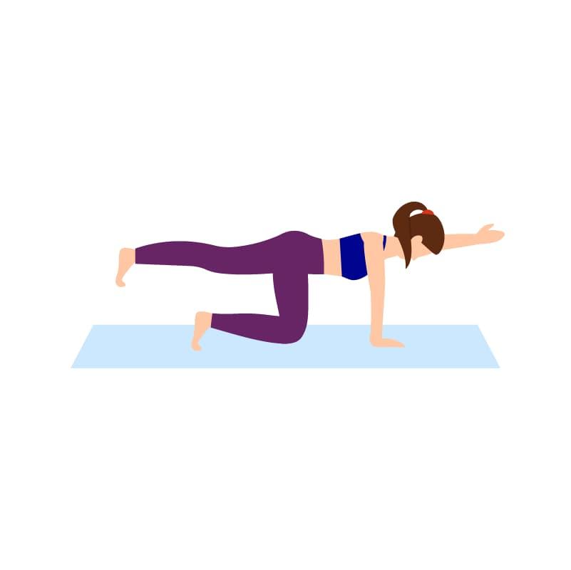 Ilustração do exercício para lombar chamado perdigueiro