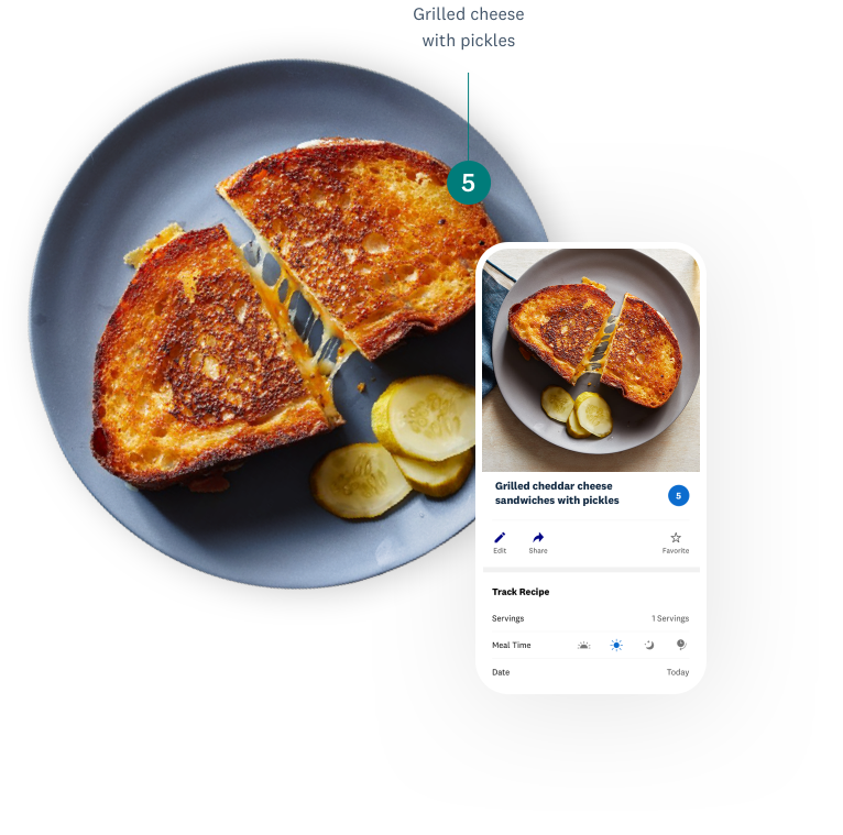 Grilled cheese with pickles image